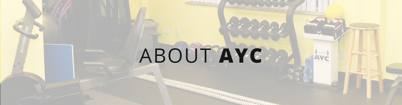 About AYC Fitness Trainers